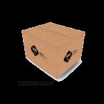 Cognex carton