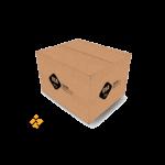 ITT carton