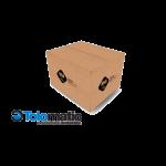 Tolomatic carton